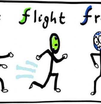 Understanding the freeze stress response